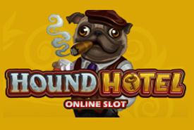 GoldenSlot-Hound-Hotel