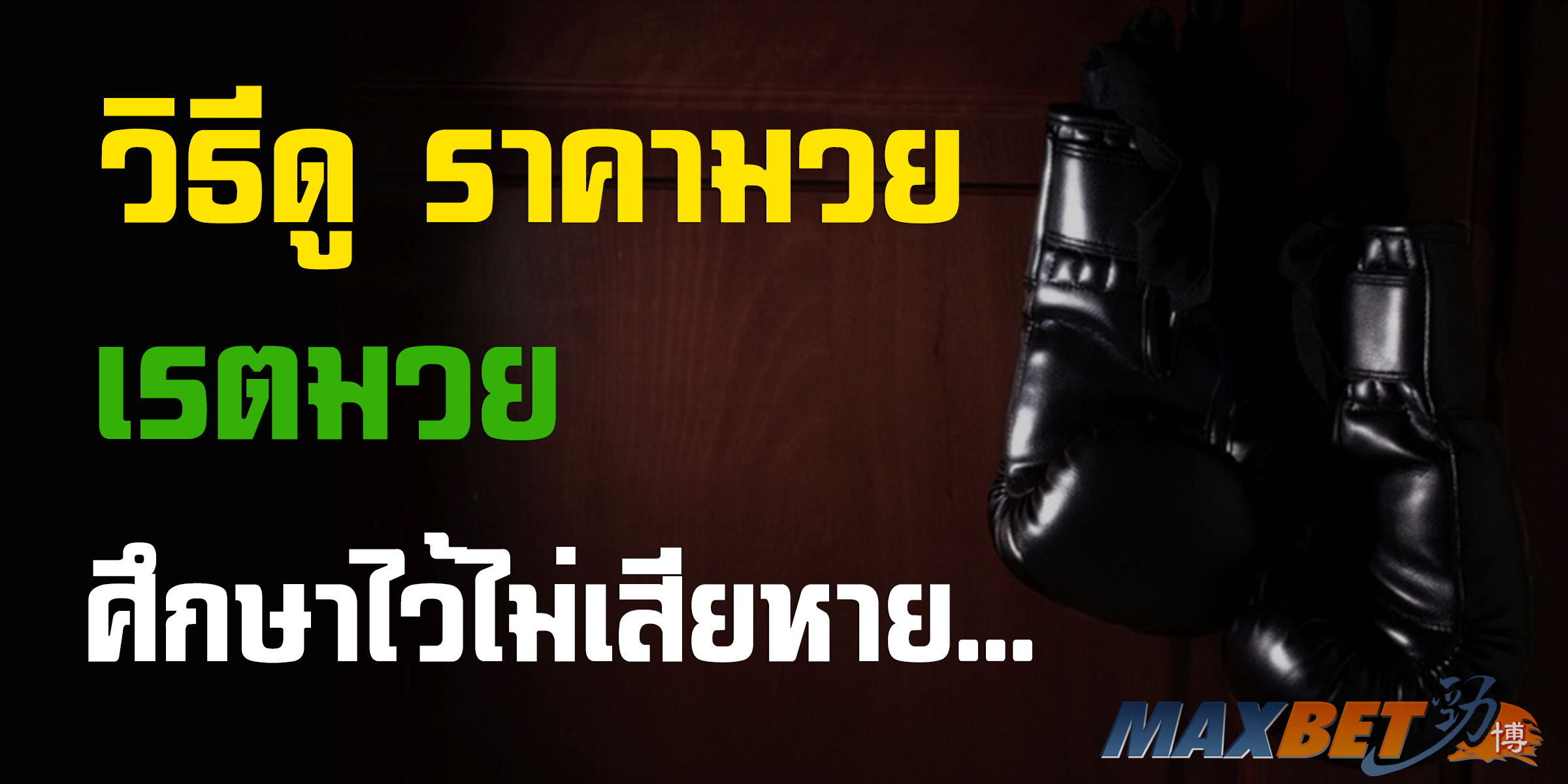 โปรแกรมมวยไทย